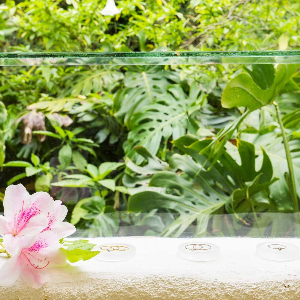 屋久島しずくギャラリーのディスプレイ 緑、花、ゴールドリング 屋久島で作る結婚指輪