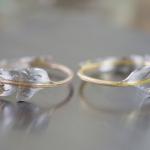 シダの指輪2本 クローズアップ オーダーメイドの結婚指輪