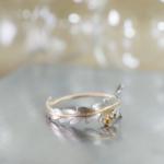 シダの指輪 プラチナ、ゴールド 屋久島で作る結婚指輪