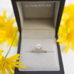 ケースの中 オーダーメイドお花の指輪 ゴールド、シルバー 屋久島のツワブキの花