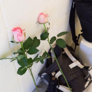 屋久島しずくギャラリー 結婚指輪の相談会風景 花とリュック
