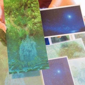屋久島しずくギャラリー 店内 高田裕子のポストカード