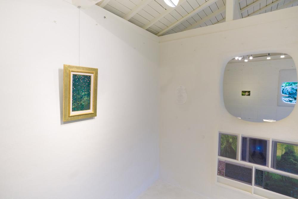 屋久島しずくギャラリー 絵画の部屋 高田裕子作 油絵