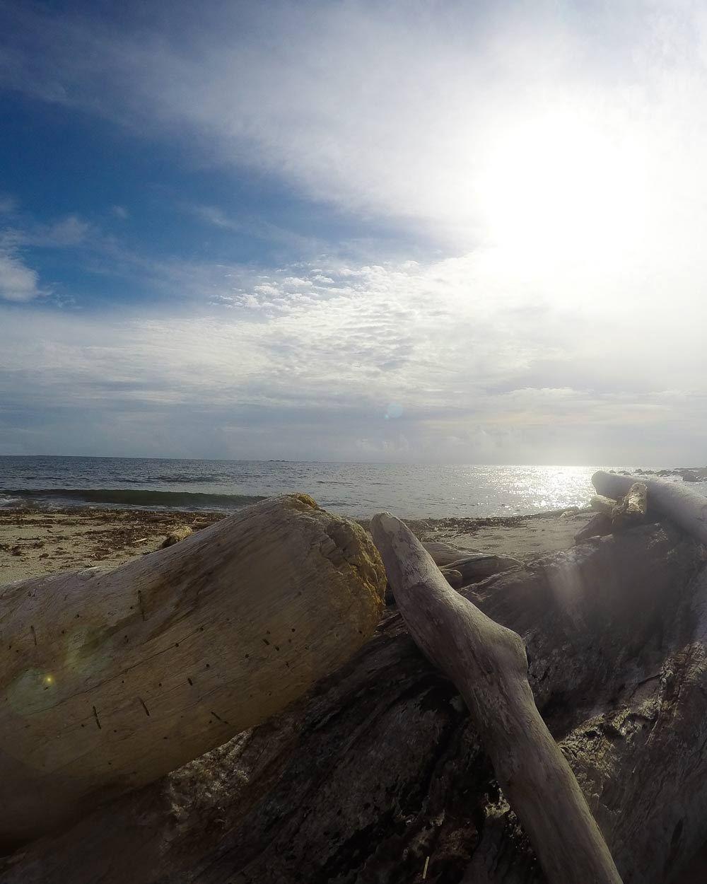 屋久島のビーチ 海、空