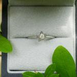 オーダーメイドのエンゲージリング ケース、屋久島の緑とともに プラチナ、ダイヤモンド 屋久島でつくる結婚指輪